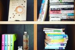 本棚にハーバリウム